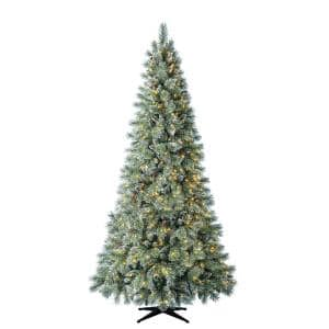 9 ft Sparkling Amelia Pine LED Pre-Lit Artificial Christmas Tree with 600 Warm White Micro Fairy Lights