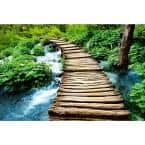 Photographic Boardwalk Landscapes Wall Mural