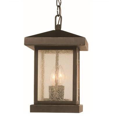 Santa Cruz 2-Light Weathered Bronze Outdoor Pendant Light with Seeded Glass