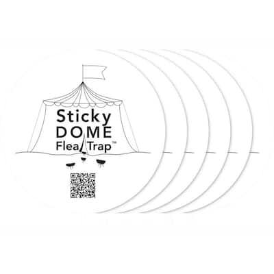 Refill Sticker for Sticky Dome Flea Trap (6-Pack)