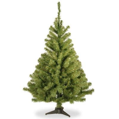 6 ft. Kincaid Spruce Artificial Christmas Tree