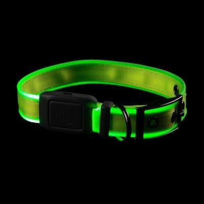 NiteDog - M - Lime/Green Rechargeable LED Collar