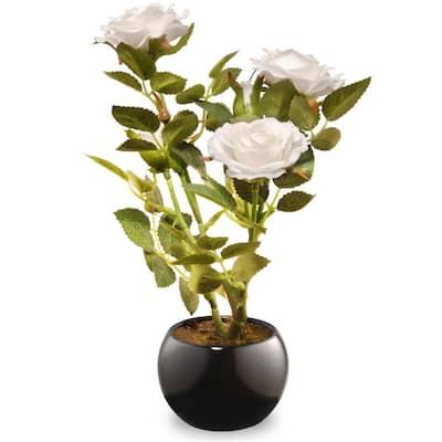 9.5 in. White Rose Flower