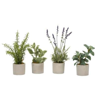 Indoor Basil, Rosemary, Lavender and Mint Sprays in Mini Cement Cylinder (Set of 4)