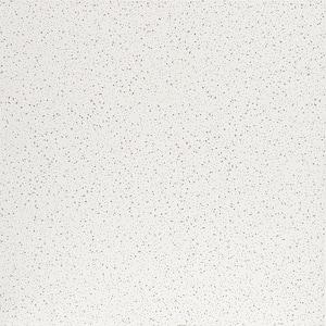 2 ft. x 2 ft. Radar White Square Edge Lay-In Ceiling Tile, pallet of 320 (1280 sq. ft.)