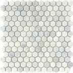 Marble Winter Frost 12.01 in. x 12.13 in. Honeycomb Polished Marble Mosaic Tile (0.978 sq. ft./Each)