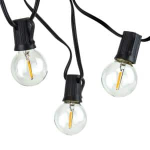 Indoor/Outdoor 25 ft. Plug-In Party LED Outdoor String Lights with 27 LED Globe G40 Bulbs (2-Free Bulbs Included)