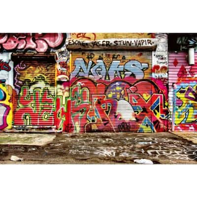 Scenic Graffiti Street Landscapes Wall Mural