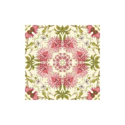 Perception Border almond/pink Wallpaper Border