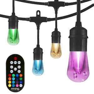 12-bulb 24 ft. Vintage Seasons Color Changing Cafe Integrated LED String Lights, Black