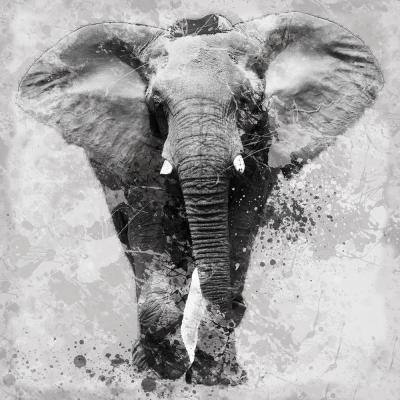 Multimedia Elephant Print Mixed Media Wall Art