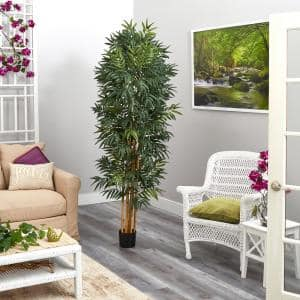 6.5 ft. Phoenix Palm Artificial Tree with Natural Trunk