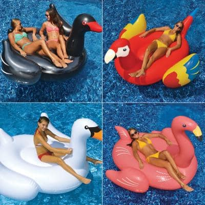Giant White Swan Flamingo Black Swan and Parrot Swimming Pool Float Combo (4-Pack)
