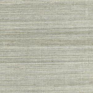 Nathan Silver Grasscloth Wallpaper Sample