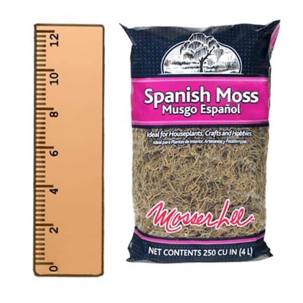 potted plants and terrarium SPANISH MOSS 250 CU IN Soil cover for dish gardens