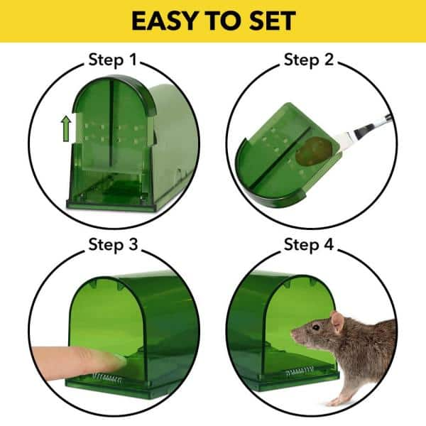 Harris Catch And Release Humane Mouse Trap 2 Pack 2emt Live The Home Depot