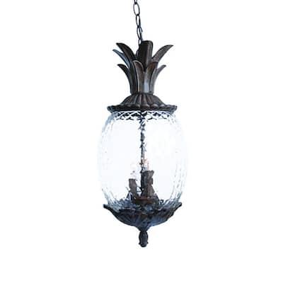 Lanai Collection 3-Light Black Coral Outdoor Hanging Light Fixture