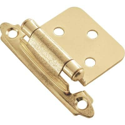 Polished Brass Surface Self-Closing Hinge (2-Pack)