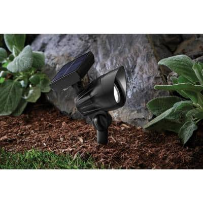 50 Lumens Solar Black Outdoor LED Landscape Spotlight