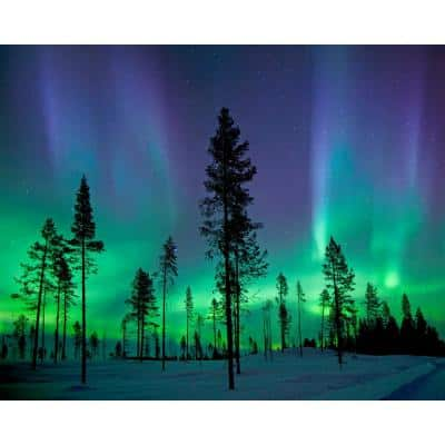 Aurora Borealis/ Northern Lights Wall Mural