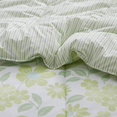 Company Cotton™ Garden Spray Botanical Percale Comforter