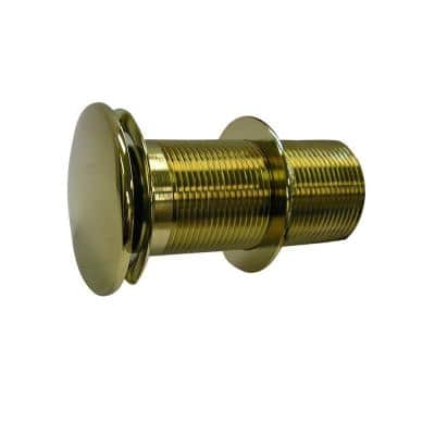 Push-Button Pop-Up Umbrella Drain in Polished Brass