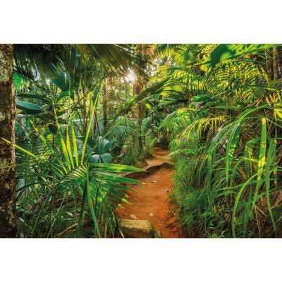 Nature Jungle Trail Wall Mural